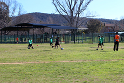Students playing on oval